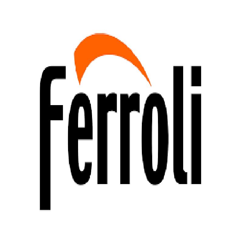 ferroli_logo2